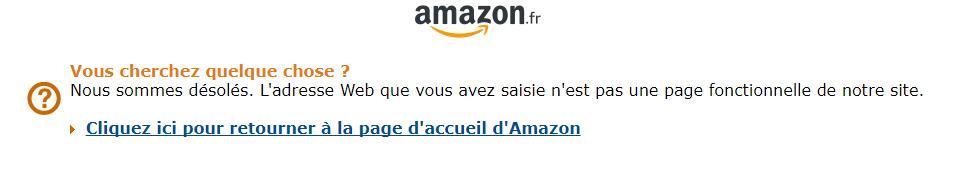 法国亚马逊上线PC版《地平线 零之曙光》页面 目前页面已下线